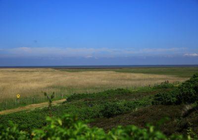Die idyllische Naturlandschaft und das Weltnaturerbe Wattenmeer
