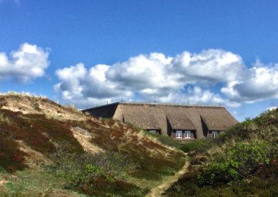 Blick von den Dünen auf das Anwesen mit der Ferienwohnung Kliffsand